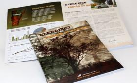 Annual Report | Central Vermont Public Service