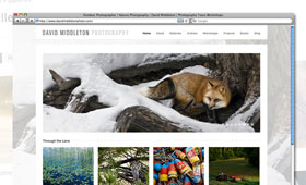 Websites | David Middleton Photography