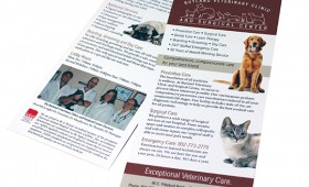 Brochure | Rutland Veterinary Clinic