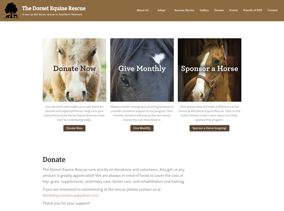 dorset equine rescue donate now