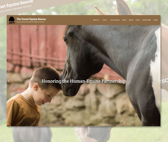 Dorset Equine Rescue homepage