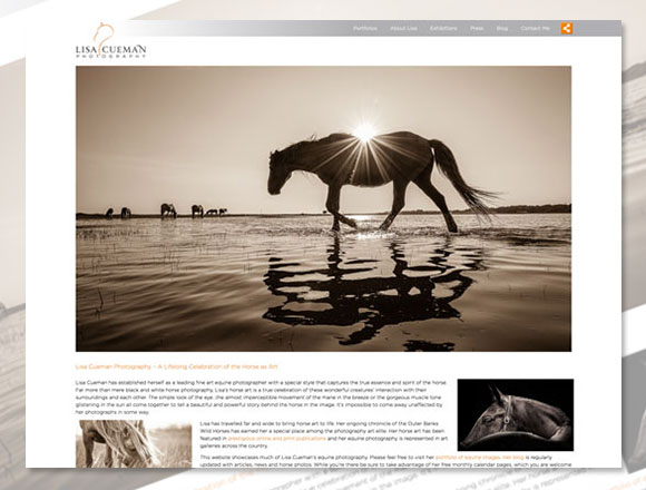 Lisa Cueman Photography Homepage