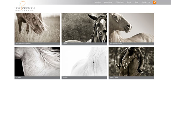 Lisa Cueman Photography Gallery Page